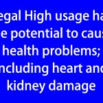 Legal High usage has the portential to cause health problems; including heart and kidney damage (blue)